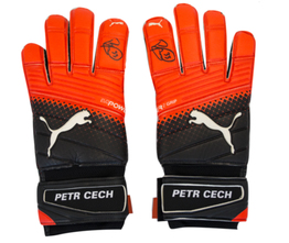Petr Cech Signed Puma evoPower Grip 2.3 RC Goalkeeper Gloves